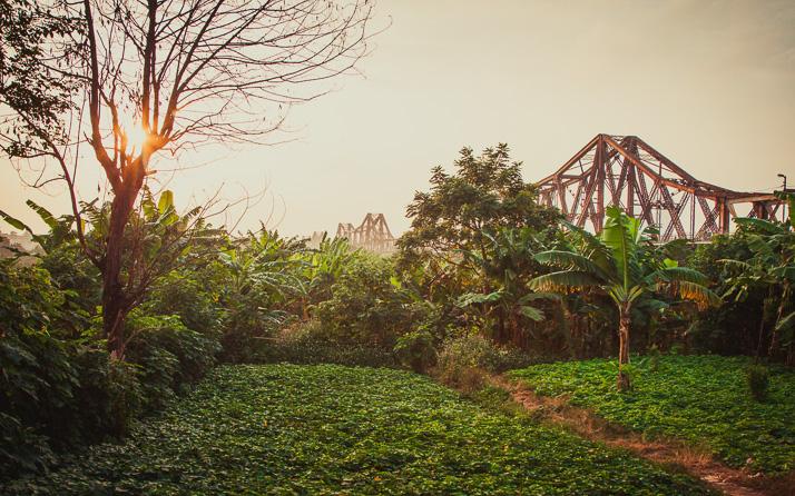 Sens Asia Travel Green Friday
