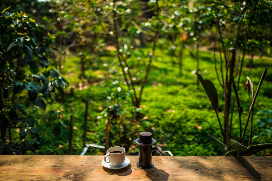 A tour for coffee lovers in Da Lat   Vietnam Tourism