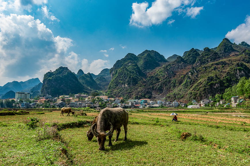 Dong Van City Ha Giang Loop