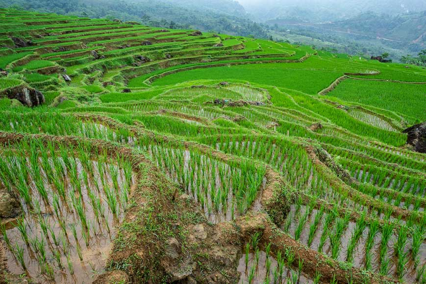 sustainable travel vietnam