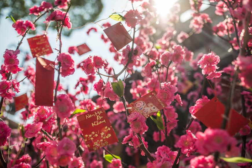Vietnam Tet Holiday 2019