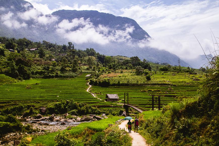 Rolling hills of Sapa