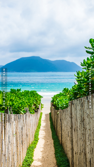 Con Dao Wallpaper Vietnam Tourism