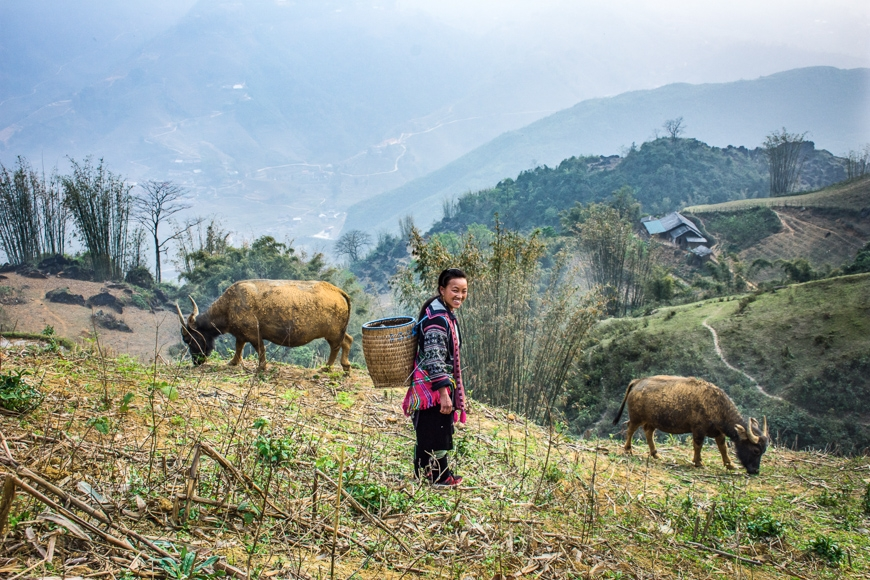 sapa trekking with local guide