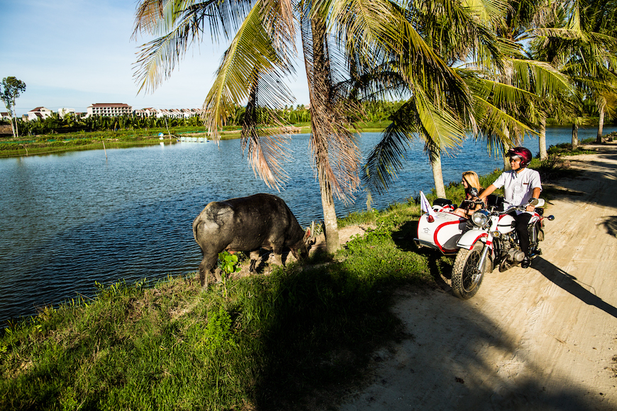 best tours in hoi an