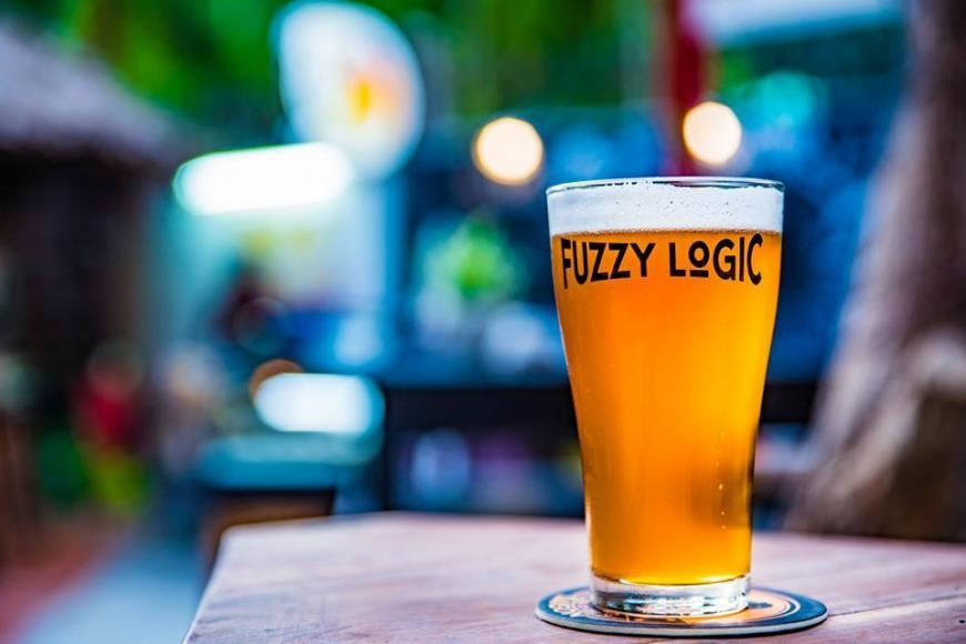 fuzzy logic saigon craft beer