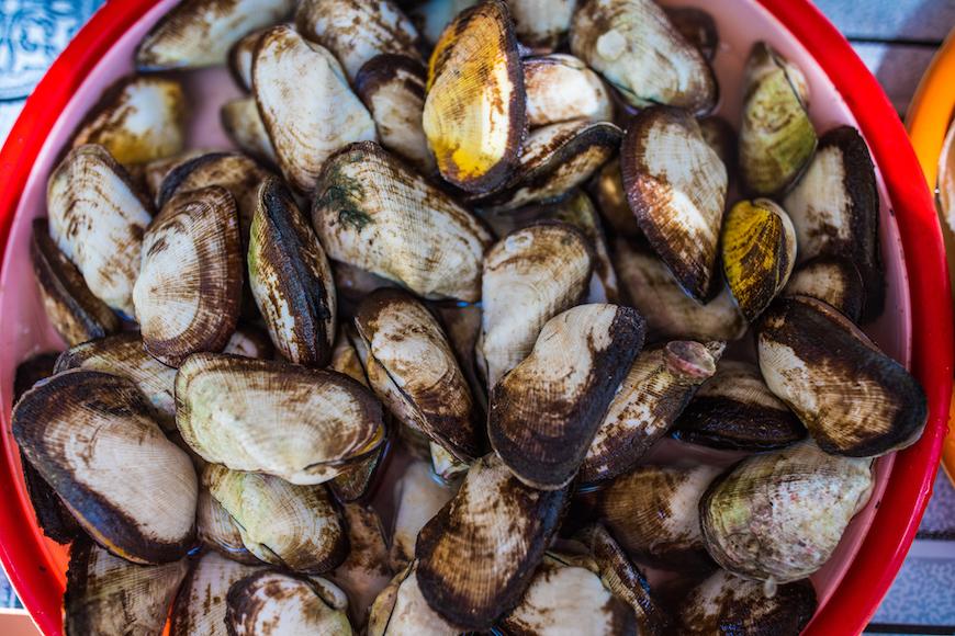 da nang best seafood restaurant