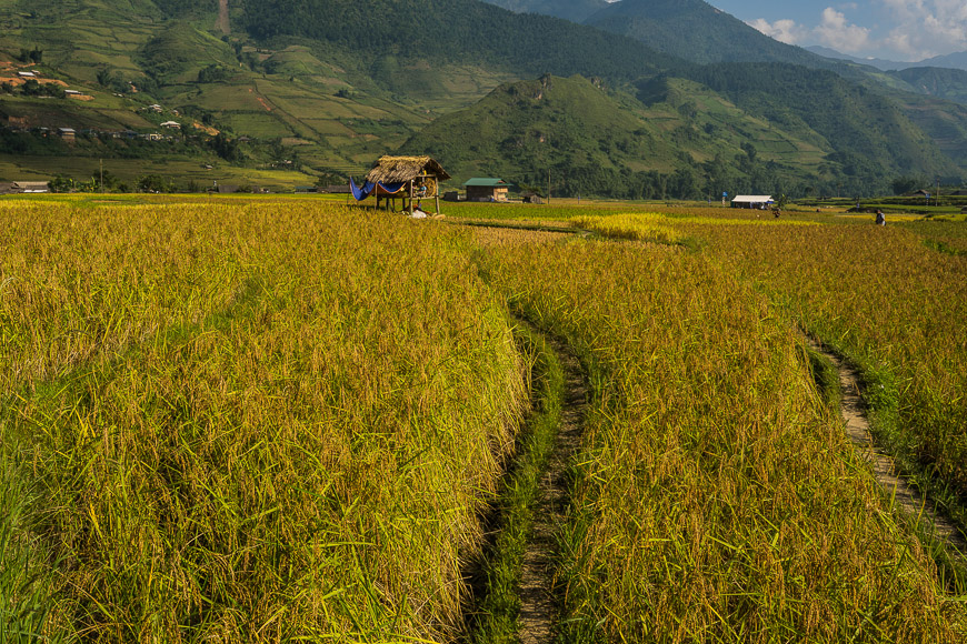 hiking mu cang chai