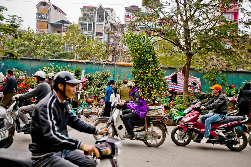 tet festival vietnam what to do