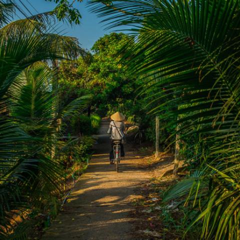 beginners guide vietnam travel