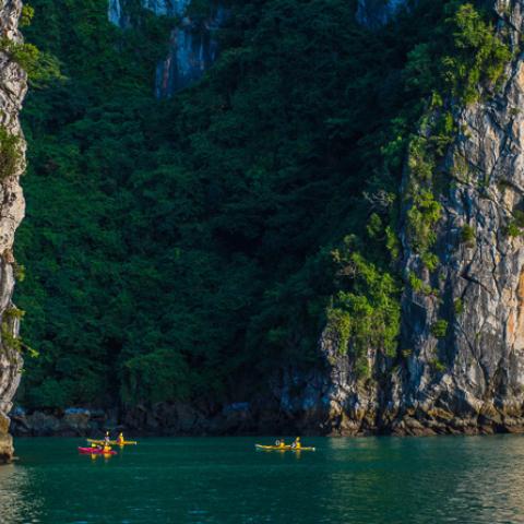 Vietnam travel starter kit