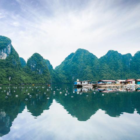 vietnam tourism 2019